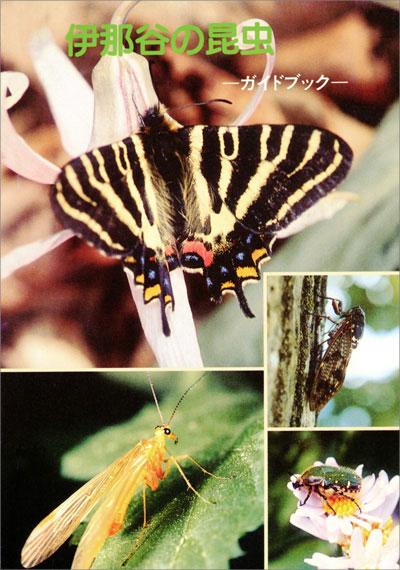伊那谷の昆虫