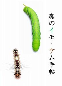 s-イモケム手帖1-1