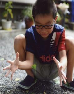 小学生の部 しんきん大賞 盛結香 「葉っぱがういた!超能力!?」